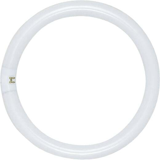 Satco 32W 12 In. Daylight T9 Circline 4-Pin Fluorescent Tube Light Bulb